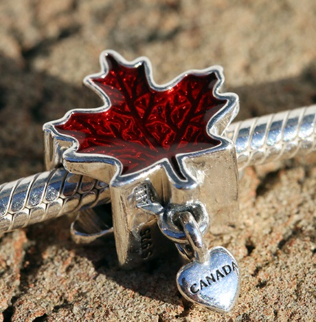 AAA Grade S925 ALE Sterling Silver Charms